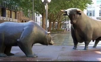bullsandbeers